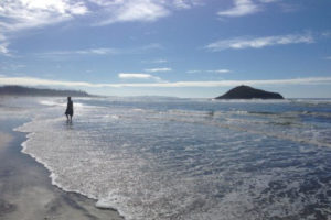 Tofino_beach_crop-300x200